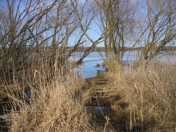 Den tidligere bådebro